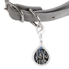 Downtown Seattle Small Teardrop Pet Tag