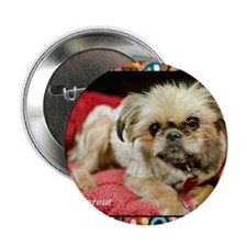 "Brussels Griffon 2.25"" Button"