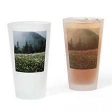 Scenic landscape with wildflowers Drinking Glass