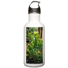 Pitcher plants Water Bottle