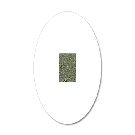 Peterborough, aerial image 20x12 Oval Wall Decal