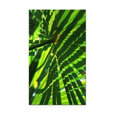 Palm leaves Rectangle Car Magnet