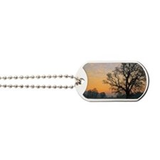 Oak tree at sunrise Dog Tags