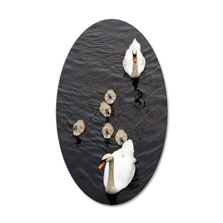 Mute swan and cygnets 35x21 Oval Wall Decal