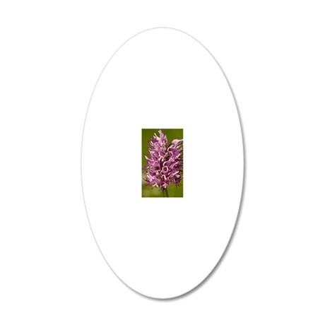 Monkey orchid (Orchis simia) 20x12 Oval Wall Decal