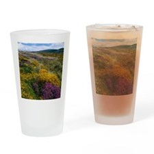 Mixed wildflowers on moorland Drinking Glass