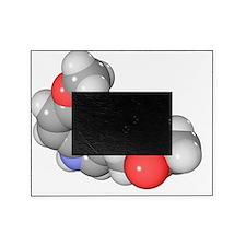 Melatonin hormone molecule Picture Frame