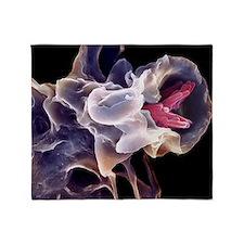 Macrophage engulfing TB bacteria, SE Throw Blanket
