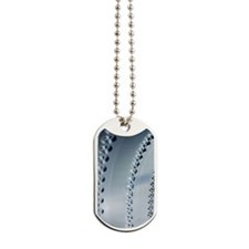 Linked holes in aircraft component Dog Tags