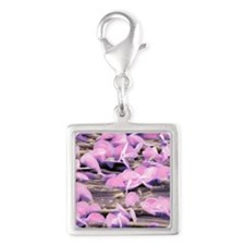 Lead oxide crystals on lead,  Silver Square Charm