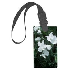 Lathyrus odoratus 'White Supreme Luggage Tag