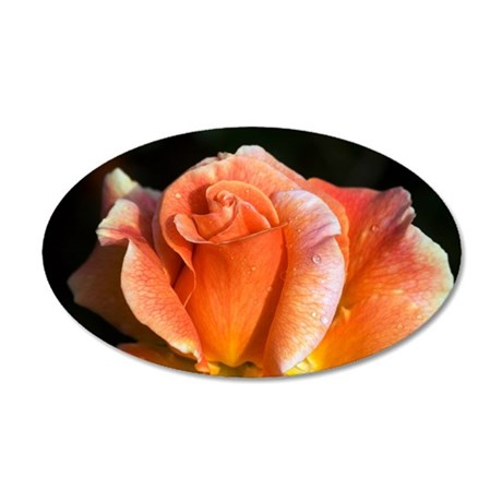 Hybrid tea rose (Rosa 'Can-C 35x21 Oval Wall Decal