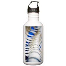 Human spine model Water Bottle