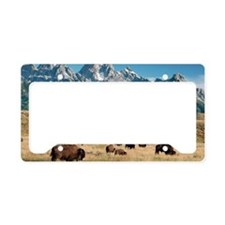 Herd of American Bison License Plate Holder