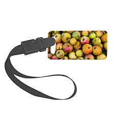 Harvested organic apples Luggage Tag