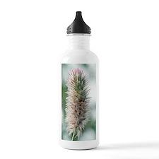 Haresfoot clover (Trif Water Bottle