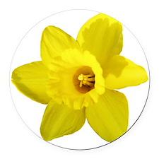 Daffodil Round Car Magnet