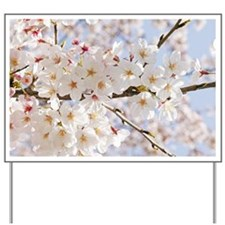 White cherry tree blossoms Yard Sign