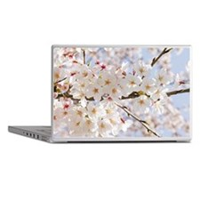 White cherry tree blossoms Laptop Skins