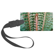 Fern fronds Luggage Tag