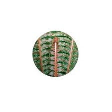 Fern fronds Mini Button