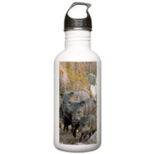 Family of Collared Pec Water Bottle