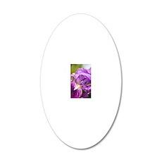 English iris (Iris latifolia 20x12 Oval Wall Decal