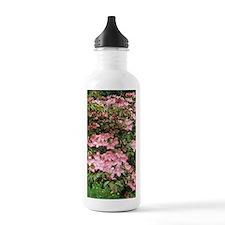 Dogwood (Cornus florid Water Bottle