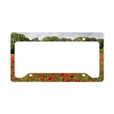 Poppy Field License Plate Holder