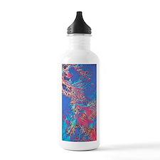 Crystals of adrenalin  Water Bottle