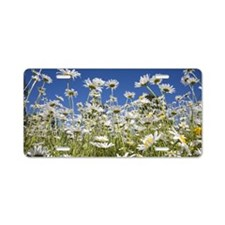 Daisies Aluminum License Plate