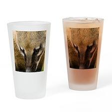 Coati Drinking Glass