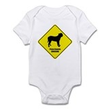 Presa Crossing Onesie