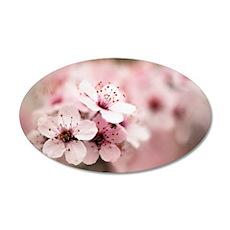Cherry Plum (Prunus ceracife 35x21 Oval Wall Decal