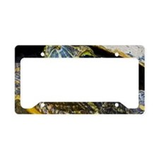 A red-eared slider turtle License Plate Holder