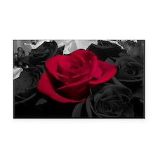 Red rose pop color Rectangle Car Magnet