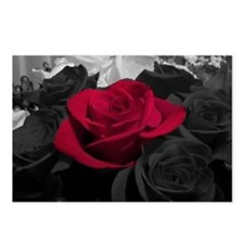 Red rose pop color Postcards (Package of 8)