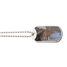 Cougar on rocks Dog Tags