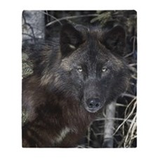 Black timber wolf Throw Blanket