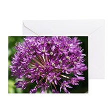 Allium Mouse Pad Greeting Card