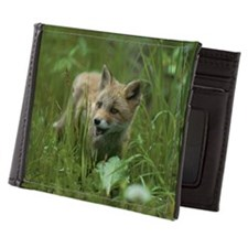 Young red fox in grass Mens Wallet