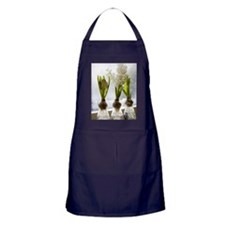 White hyacinths in a window, Sweden. Apron (dark)
