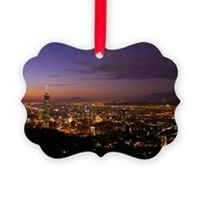 A beautiful overview to Taipei ci Ornament