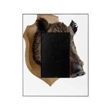 Mounted Boars Head Picture Frame