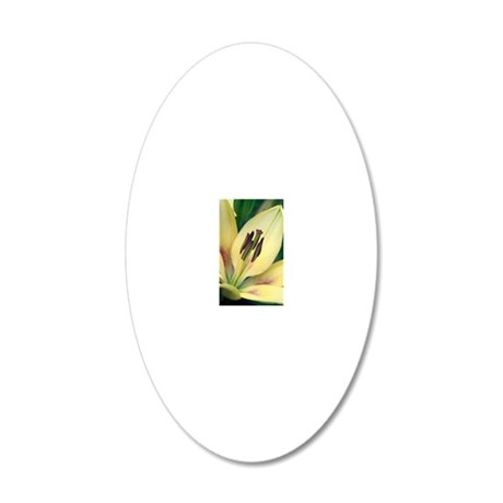 Asiatic lily (Lilium sp.) 20x12 Oval Wall Decal
