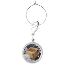 Measure and plum blossoms Round Wine Charm