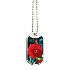 Camellia flower Dog Tags