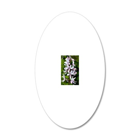 Burning Bush (Dictamnus albu 20x12 Oval Wall Decal
