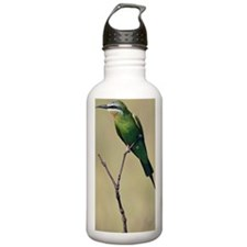 Blue-cheeked bee-eater Water Bottle