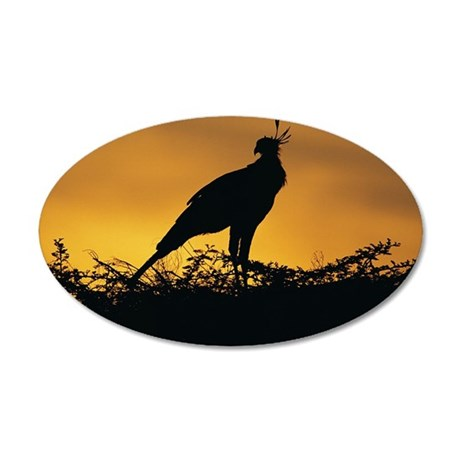 Secretary Bird silhouetted a 35x21 Oval Wall Decal
